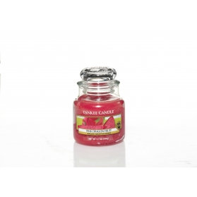 Yankee Candle Pink Dragonfruit SMALL