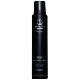 Paul Mitchell Dry Shampoo Foam